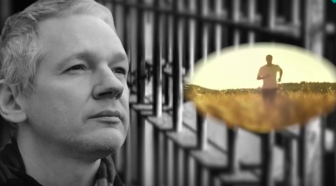 Freeing Julian Assange: Part One